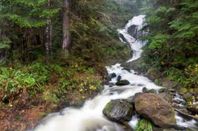 Olympic National Park photography spots - Bunch Creek