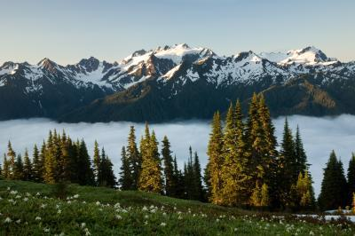 photos of Olympic National Park - High Divide