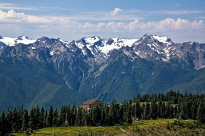 pictures of Olympic National Park - Hurricane Ridge