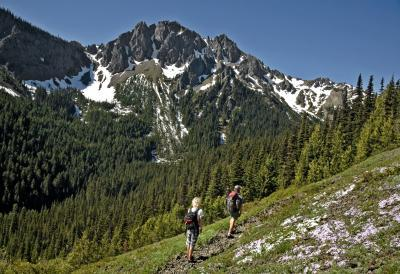 photos of Olympic National Park - Marmot Pass