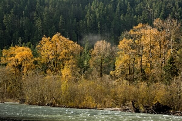 Autumn and the Elwha River