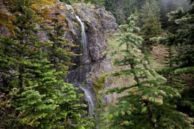 photos of Olympic National Park - Mount Townsend
