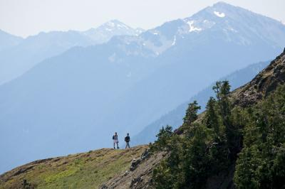 pictures of Olympic National Park - Mount Angeles