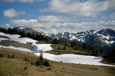 images of Olympic National Park - Obstruction Point