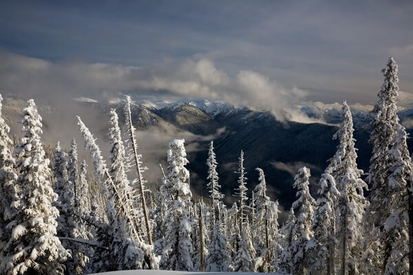 Winter from Obstruction Point Rd