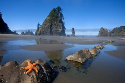 Olympic National Park photo spots - Point of the Arches