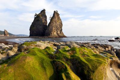 photos of Olympic National Park - Rialto Beach