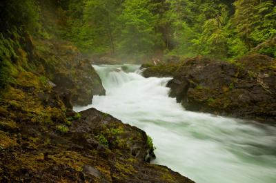 images of Olympic National Park - Salmon Cascades