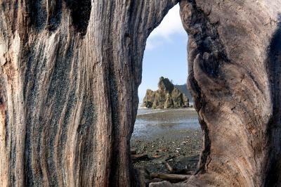 pictures of Olympic National Park - Ruby Beach