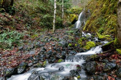 photos of Olympic National Park - The Dosewallips