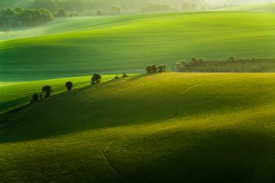 photo spots in East Sussex - Cold Combes (South Downs NP)