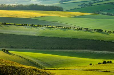 photos of Brighton & South Downs - Cold Combes (South Downs NP)