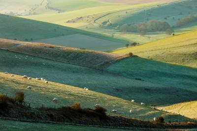 pictures of Brighton & South Downs - Kingston Ridge (South Downs NP)