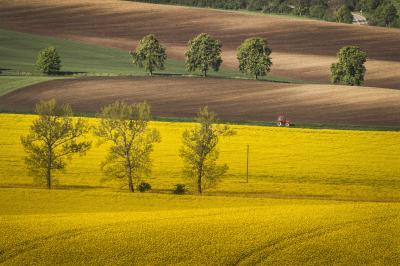 Southern Moravia photography guide