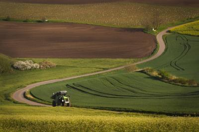 Photographing Southern Moravia - Sigma-Shaped Road