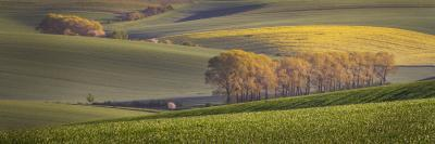 Southern Moravia photography guide - The Middle of Nowhere