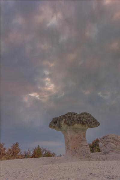 pictures of Bulgaria - Stone Mushrooms