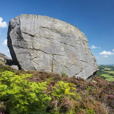 Coquet Valley: The Drake Stone
