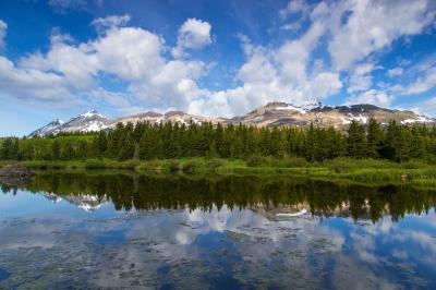 photography spots in Glacier National Park - Marias Pass Beaver Ponds