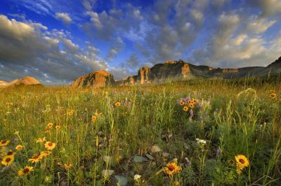 Montana photo spots - Many Glacier Meadows
