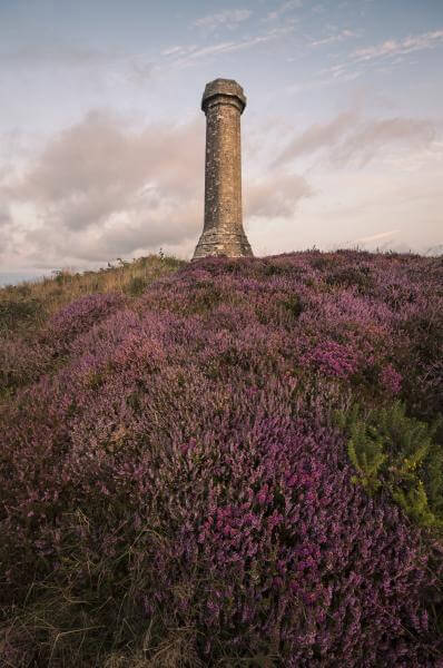 pictures of Dorset -   Hardy Monument