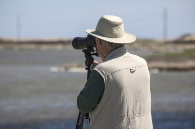 photography locations in North Carolina - Pea Island National Wildlife Reserve