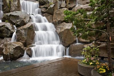 pictures of Seattle - UPS Waterfall Garden Park
