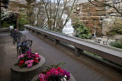 images of Seattle - UPS Waterfall Garden Park