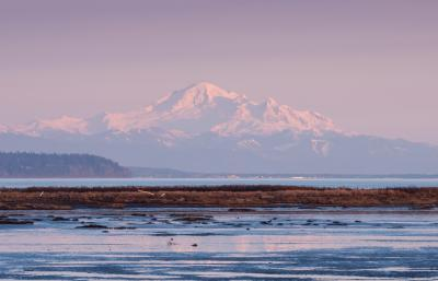 photo locations in Greater Vancouver - Boundary Bay Dyke, Delta
