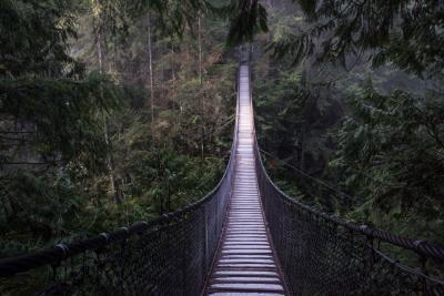 Greater Vancouver photography spots - Lynn Canyon Suspension Bridge, North Vancouver