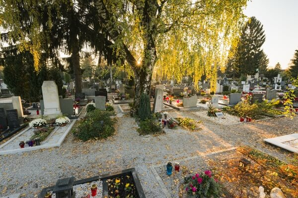 Žale Cemetery (Images)