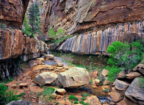 Utah photography spots - Water Canyon