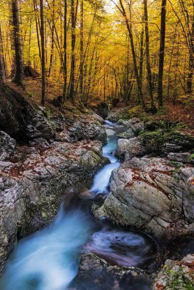 photos of Triglav National Park - Mostnica River
