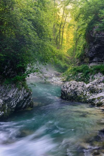 images of Triglav National Park - Vintgar Gorge