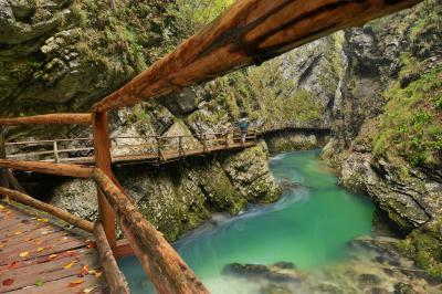 pictures of Lakes Bled & Bohinj - Vintgar Gorge