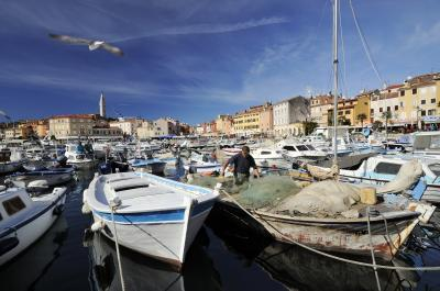 Rovinj Harbour View