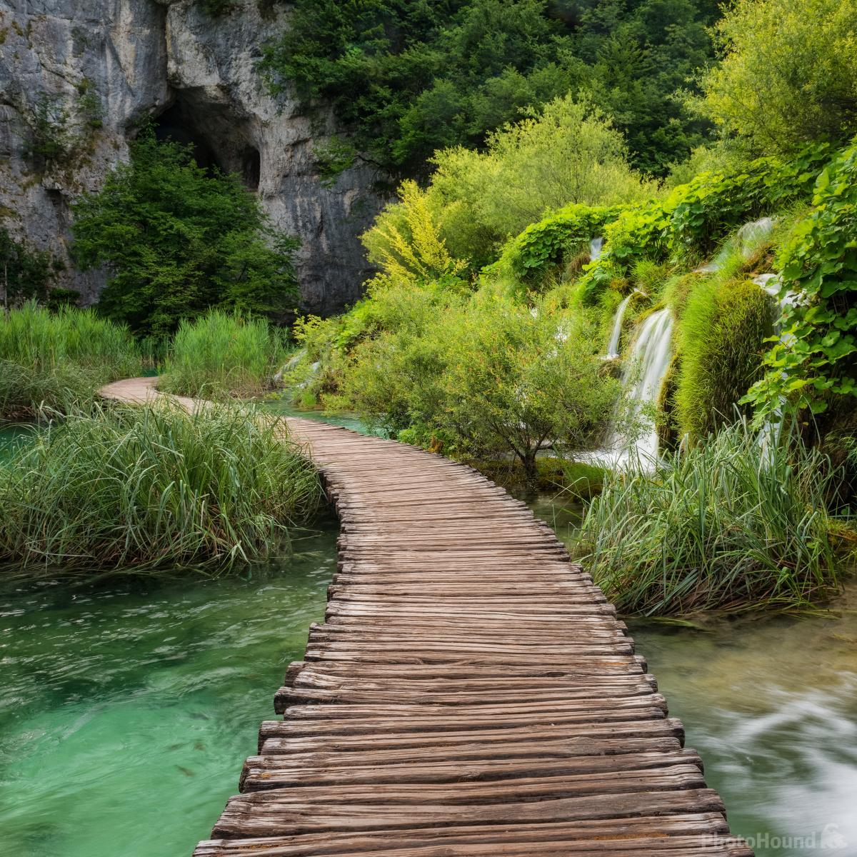 Image of Kaluđerovac Boardwalk  by Luka Esenko