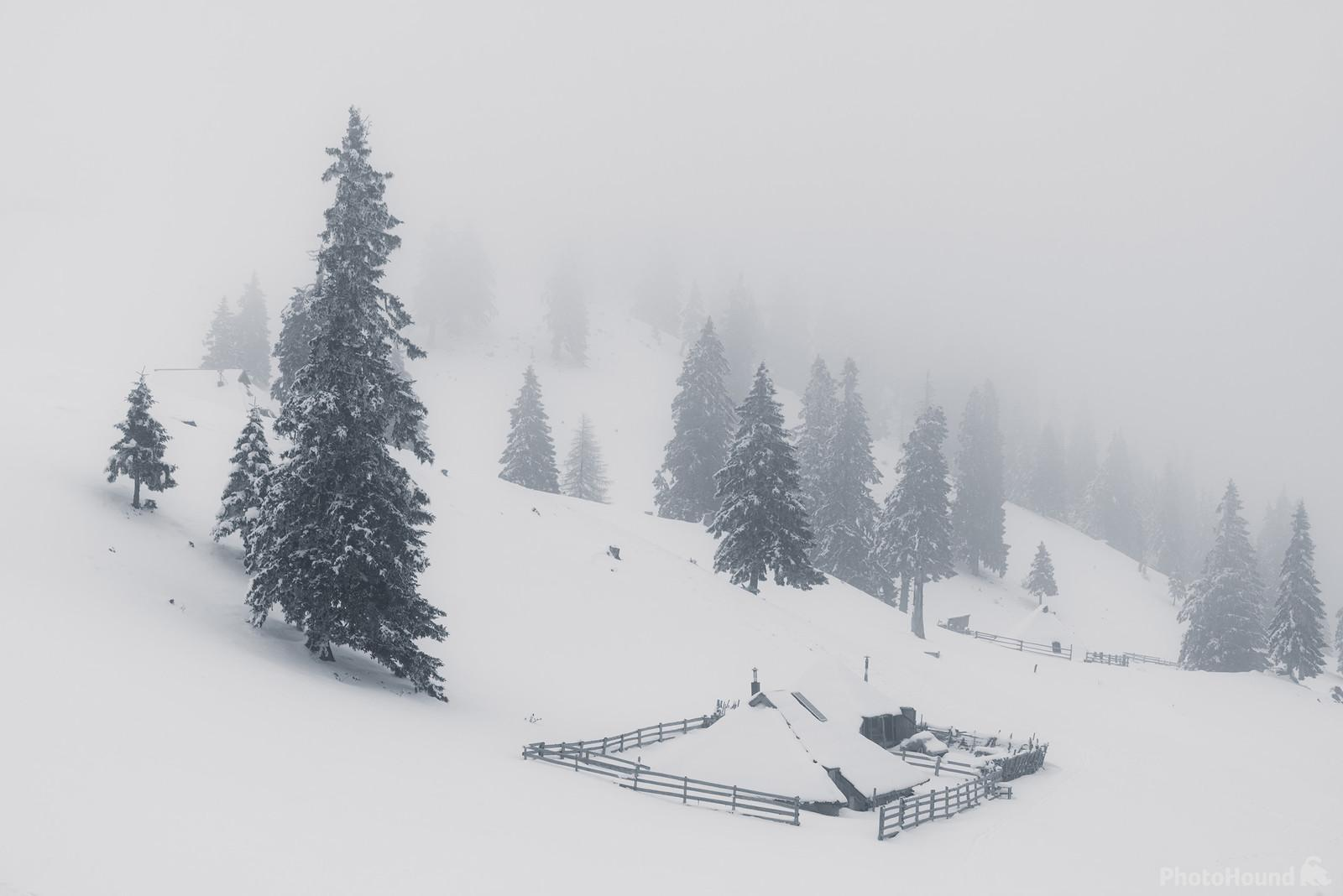 Whiteout at Mala Planina